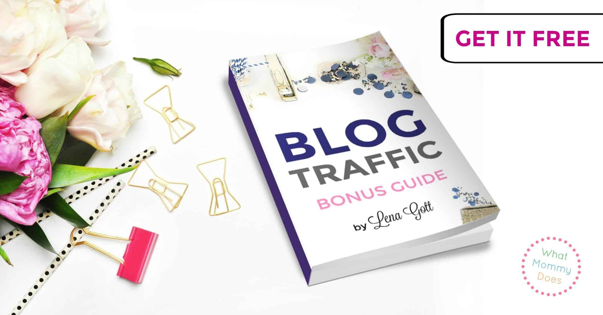 Blog Traffic Guide from Lena Gott